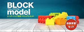 体験学習セット「ブロック・モデル」